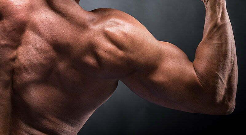 Kekuatan dan massa otot berkat asam amino